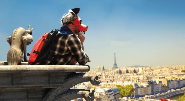 Zaush Mister Puppy Italy 2017 in Paris